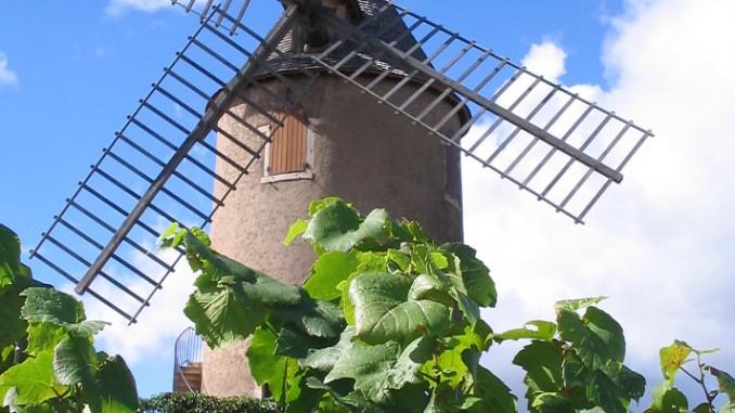 Wissenswertes über Beaujolais
