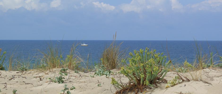 Die Atlantikküste in Aquitanien