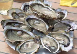 Sollen angeblich die Manneskraft stärken - Austern